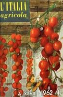 Italia Agricola 21.jpg
